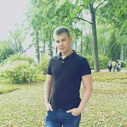 Николай, 33 года, Калуга
