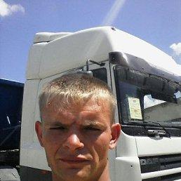 Николай, 27 лет, Марьинская