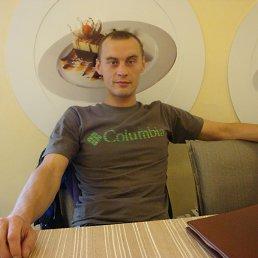 Igor, 34 года, Донской