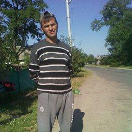 Виталик, 42 года, Жашков