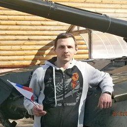 Сергей, 37 лет, Кольчугино