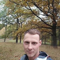 Сергей, 30 лет, Сумы