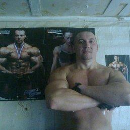 Aleksej, 40 лет, Бердичев