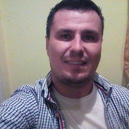 Valera, 33 года, Кельменцы