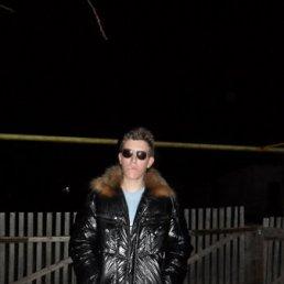 Станислав, 28 лет, Зимовники