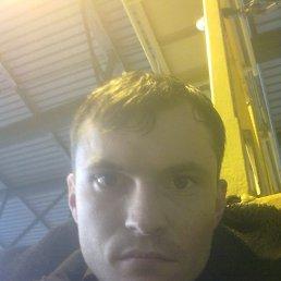 Александр, 36 лет, Вольногорск