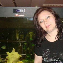 Фото Елена, Алматы, 48 лет - добавлено 23 июня 2012