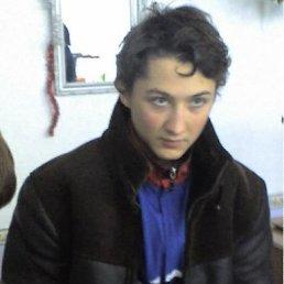 Фото Олег, Кировское, 30 лет - добавлено 19 августа 2011
