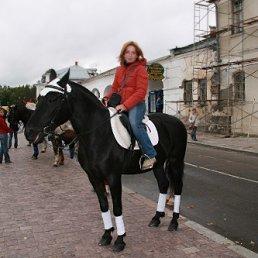 Inna Shleeva, 44 года, Москва