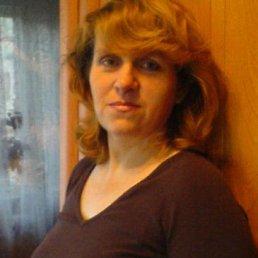 Елена, 53 года, Каменногорск