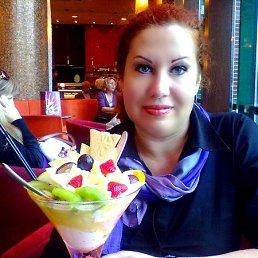 Елена, 48 лет, Светлогорск