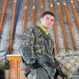 Алексей, 28 лет, Завитинск