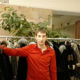 Вадим, 32 года, Александрия
