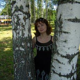 Светлана, 46 лет, Стодолище