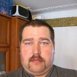 Роман, 38 лет, Корец