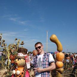 Станислав, 29 лет, Чугуев