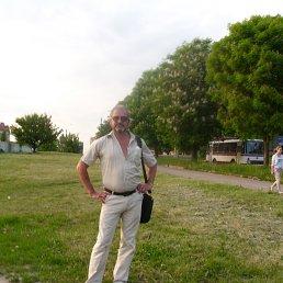 shase, 61 год, Березно