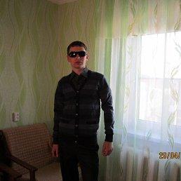 Александр, 28 лет, Новый Оскол