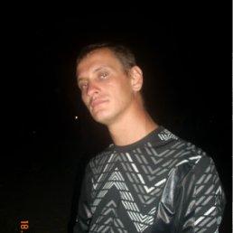 Николай, 35 лет, Перещепино