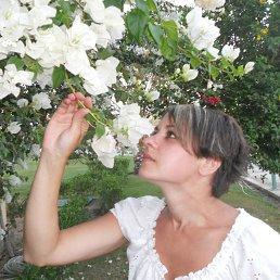 Марина, 36 лет, Брянск