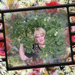 Екатерина, 36 лет, Покров