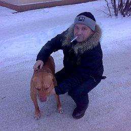 Александр Зерву, 40 лет, Снегири
