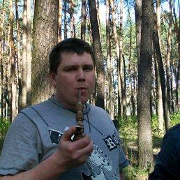 Андрей, 43 года, Лохвица