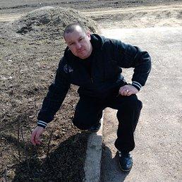 Андрей, 39 лет, Новая Одесса