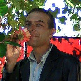 леонид, 48 лет, Старобельск