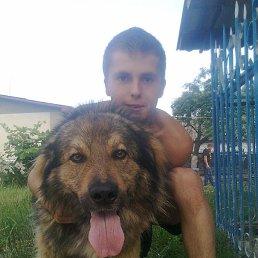василь, 26 лет, Демидовка