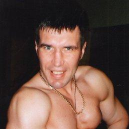 Viktor, 42 года, Даугавпилс - фото 4