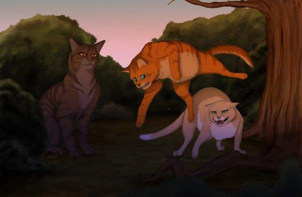 Картинки котов-воителей огонька драка