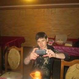 Дима, 27 лет, Городище