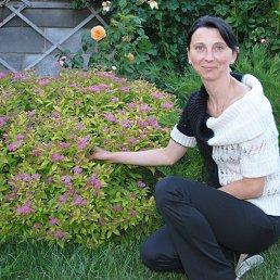 Ирина, 42 года, Белгород-Днестровский