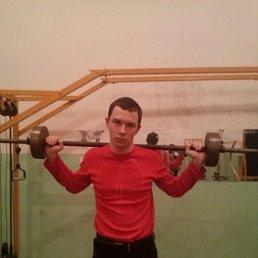 Дима, 28 лет, Новопокровская