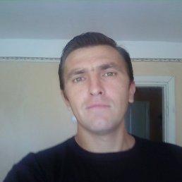 сергей, 41 год, Кицмань