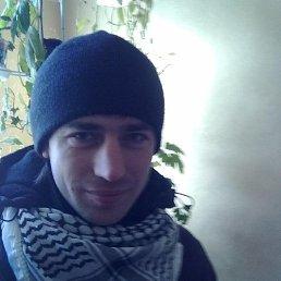 aleksey, 34 года, Олевск