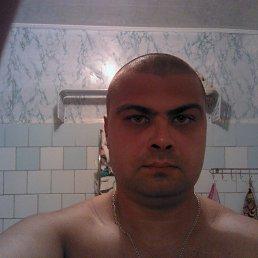 александр, 37 лет, Северская