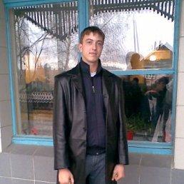 АЛЕКС, 26 лет, Пономаревка
