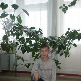 Андрей, 21 год, Новичиха