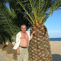 ахремцев, 64 года, Морозова