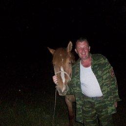 Николай, 43 года, Черноморское
