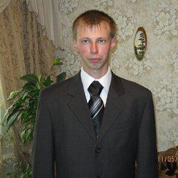Алексей, 29 лет, Хотьково