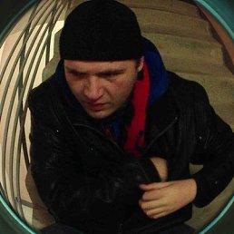 Димон, 26 лет, Лобня