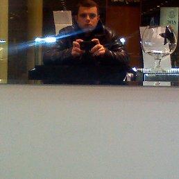 Николай, 29 лет, Лосино-Петровский
