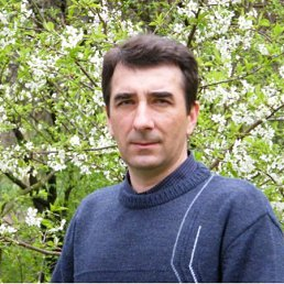 Владимир, 50 лет, Иршанск