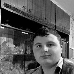 Александр, 29 лет, Богородицк