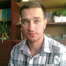 Вячеслав, 40 лет, Орехов