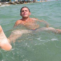 Александр, 38 лет, Тараща