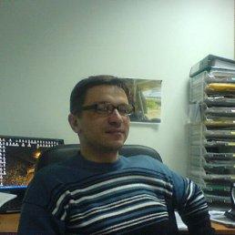 Александр, 41 год, Гнивань